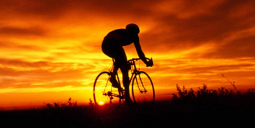 Glucosamine, sport
